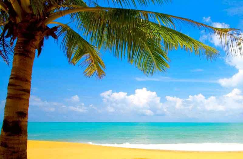 goa-beach-travel-visiit