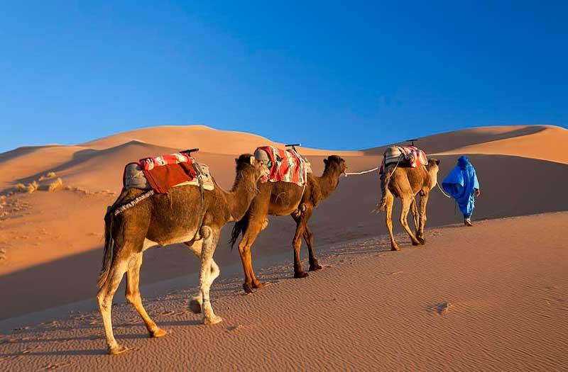 rajastan-sahara-desert-visiit
