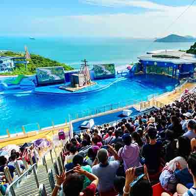 ocean-park-view-trip-visiit