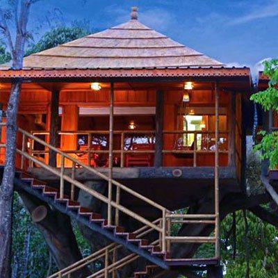 tree-house-wayanad-visiit