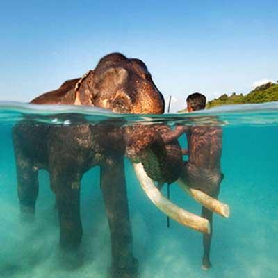 elephanta-beach-trip-visiit
