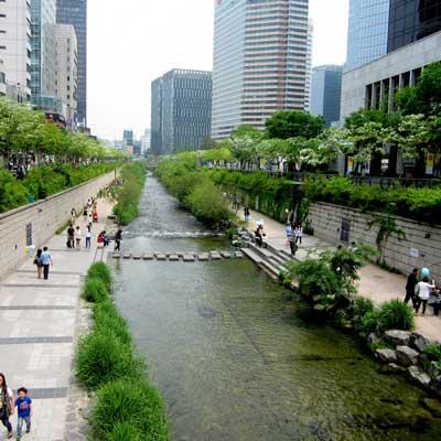 Cheonggyecheon Tadpole Park